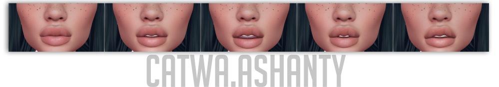 ash3.jpg